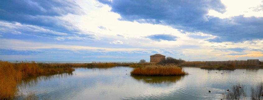 riserva naturale regionale sentina